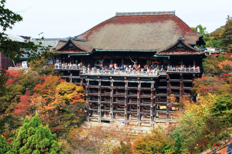 The wooden architecture surrounded by autumn foliage.