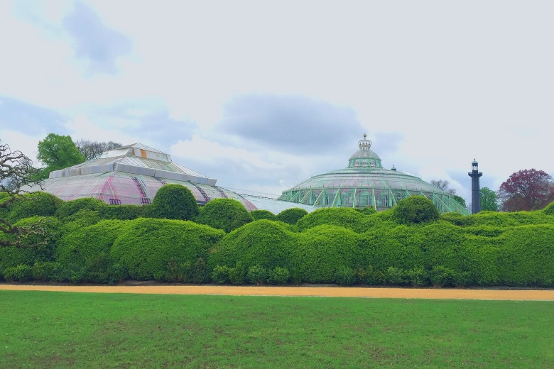 An overview of the domed greenhouses.