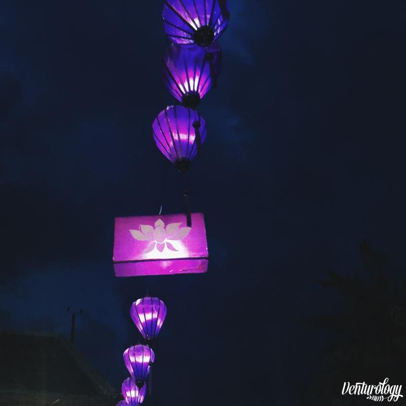 Violet lanterns.