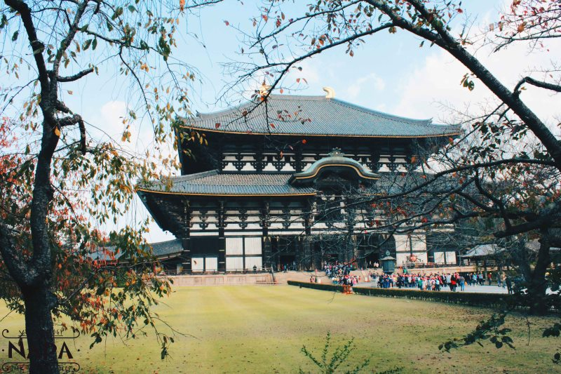 Todai-ji Temple on a clear day.
