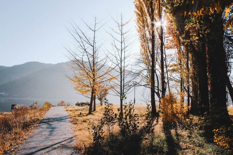 Một góc hồ Ashi