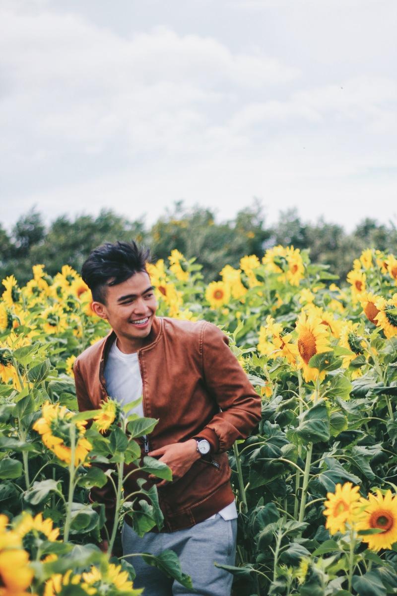 Lạc vào đồng hoa hướng dương Đà Lạt | Lost in Da Lat sunflower field