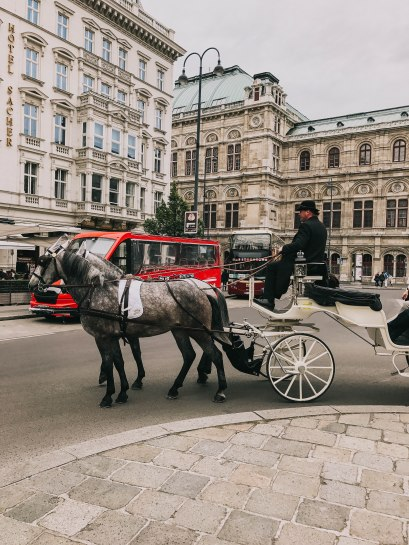 Vienna Horse Carrier