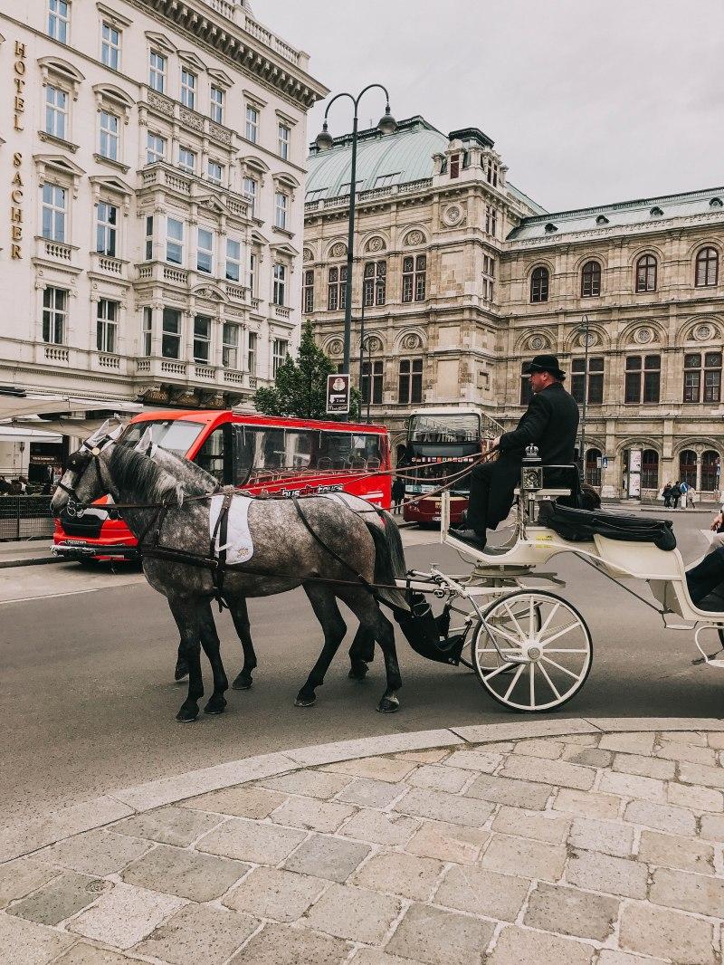 Vienna Horse Carrier