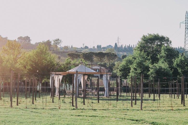 Tuscany Sunset vineyard