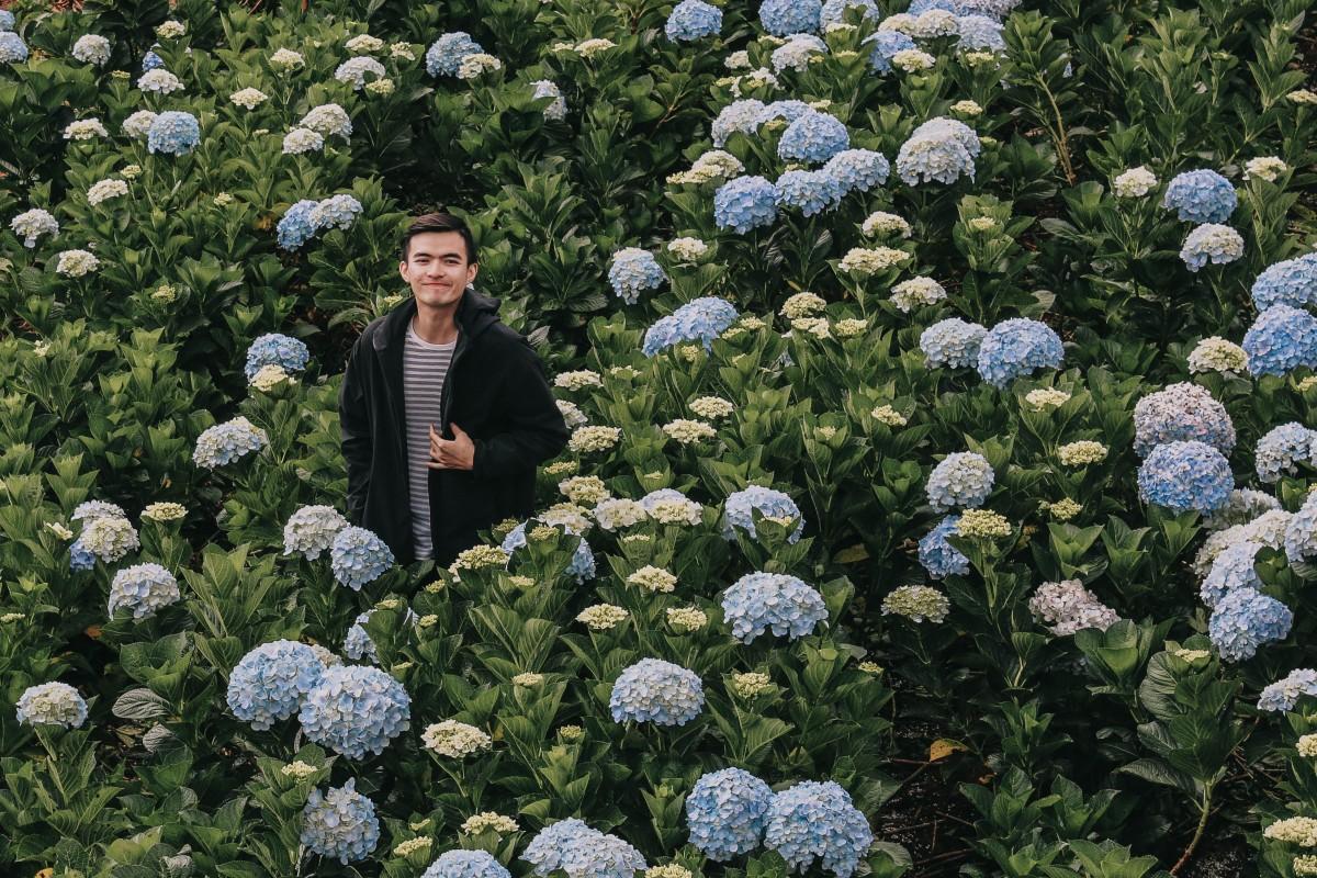 Lạc giữa đồng hoa cẩm tú cầu, Đà Lạt | Lost in hydrangea garden, Dalat