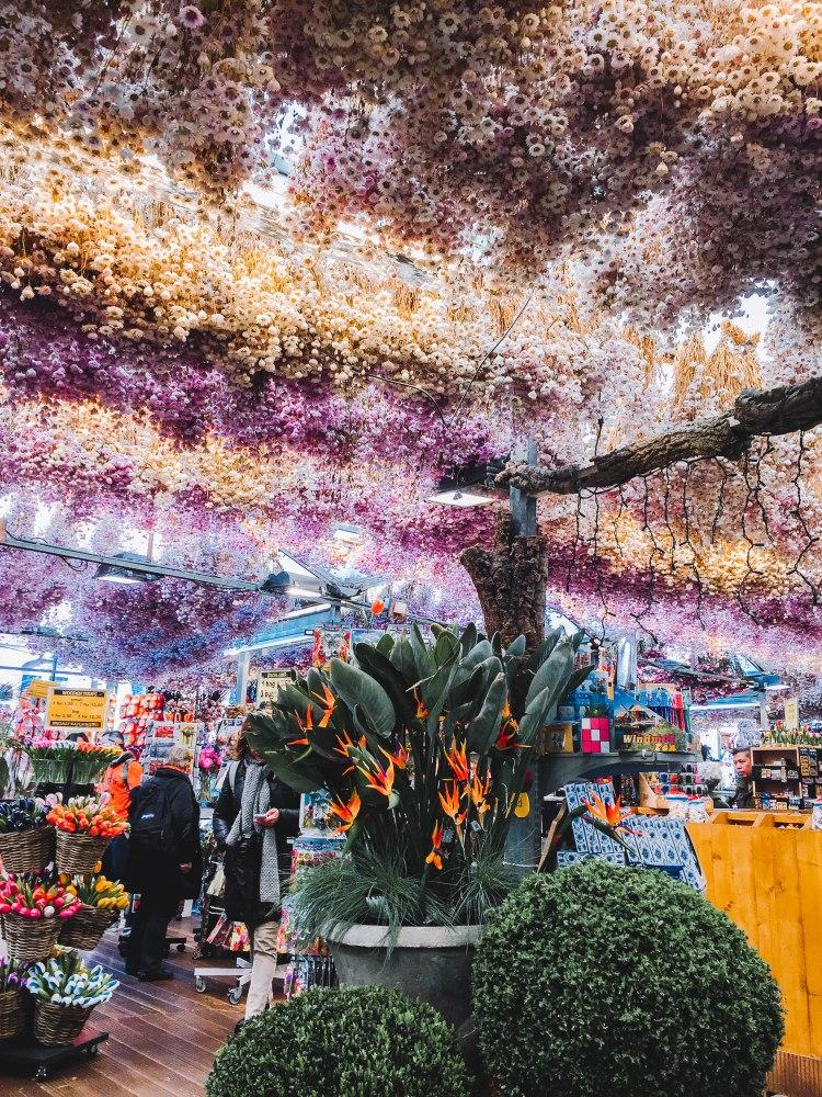 Cửa hàng hoa bloemenmarkt Amsterdam