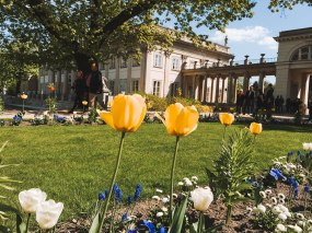 Lazienki Palace Park