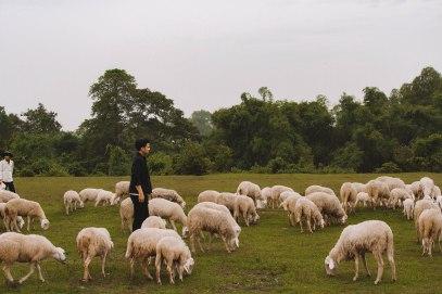 Lý Thành Cơ Đàn Cừu Suối Nghệ Saigon