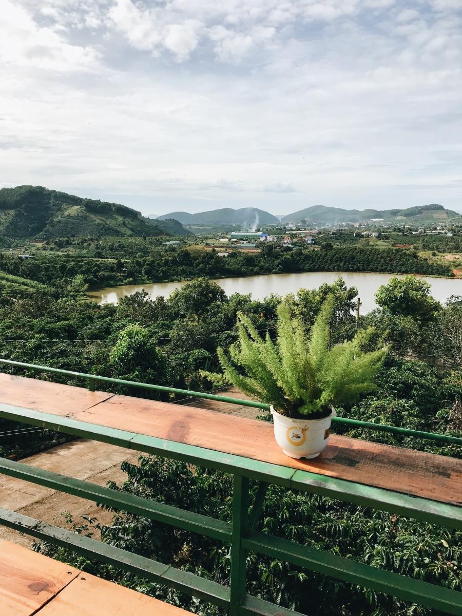 Đồng hoa và Cà phê ở Xã Tà Nung, Đà Lạt | Flowers & coffee in Ta Nung Town, Dalat