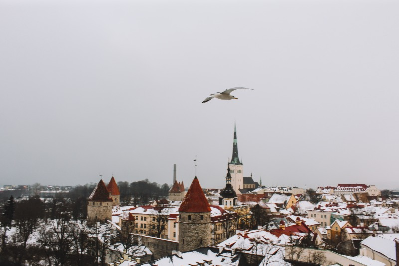 Phố cổ Tallinn Estonia toàn cảnh