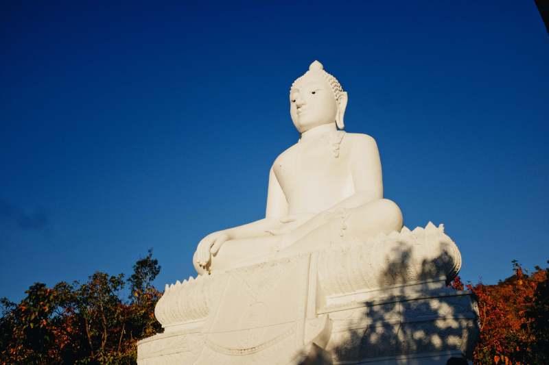 Pai 11 - Tuong Phat Khong Lo
