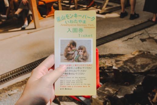 Arashiyama Kyoto Venturology 3