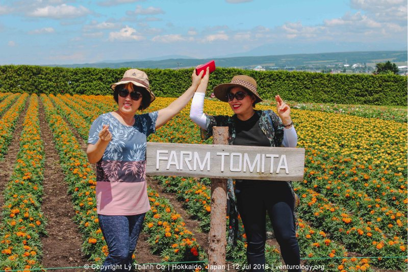 Lavender Farm Hokkaido Venturology Farm Tomita