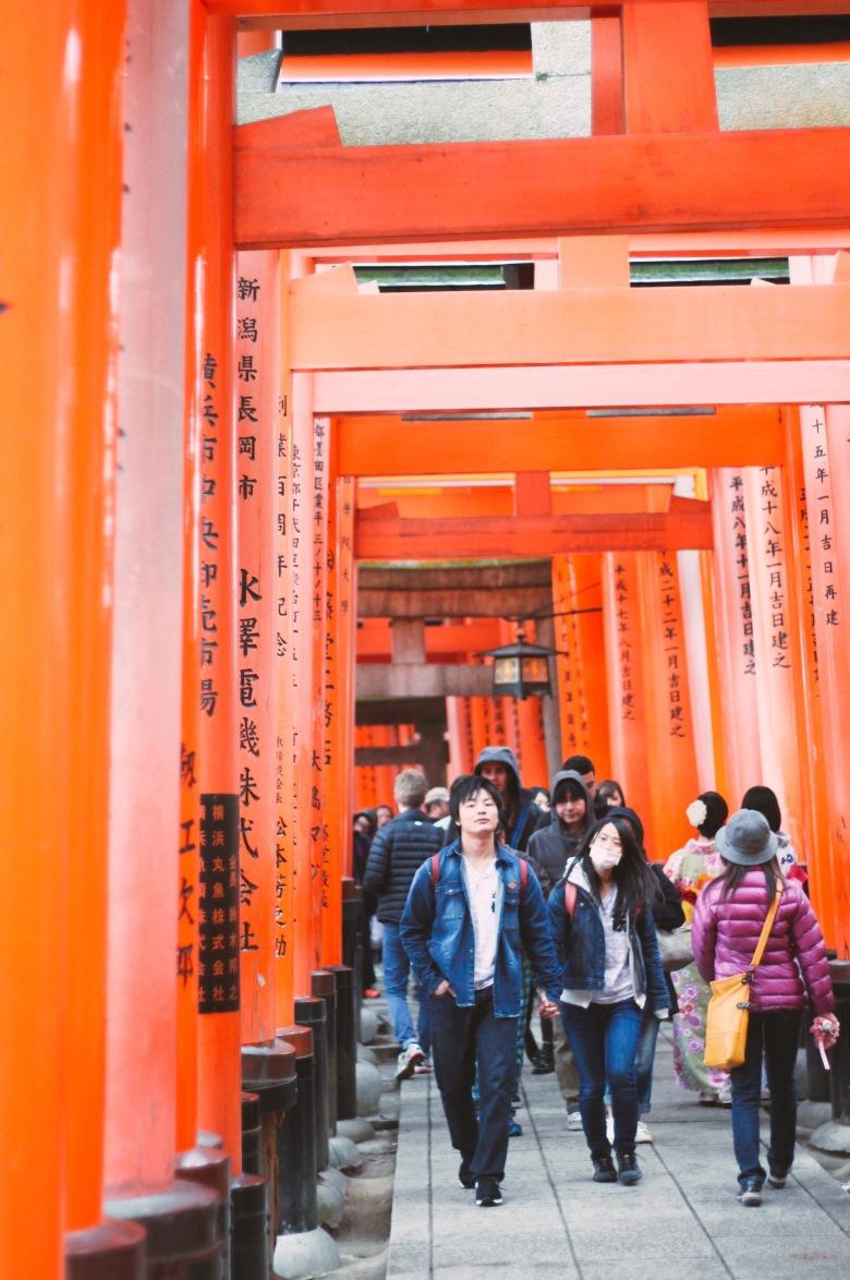 lịch trình du xuân nhật bản 7 ngày, từ tokyo Đến osaka 1