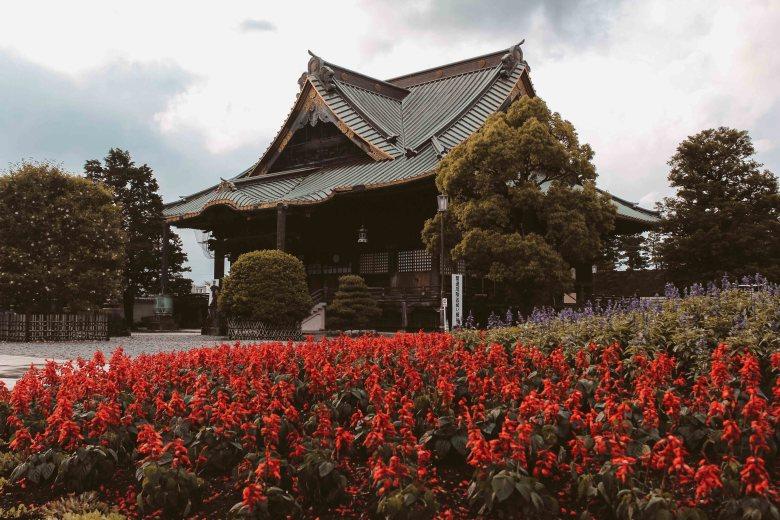 Lịch Trình Nhật Bản Lý Thành Cơ Travel Blog 3