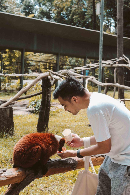 Safari Phú Quốc Lý Thành Cơ Travel Blog 8