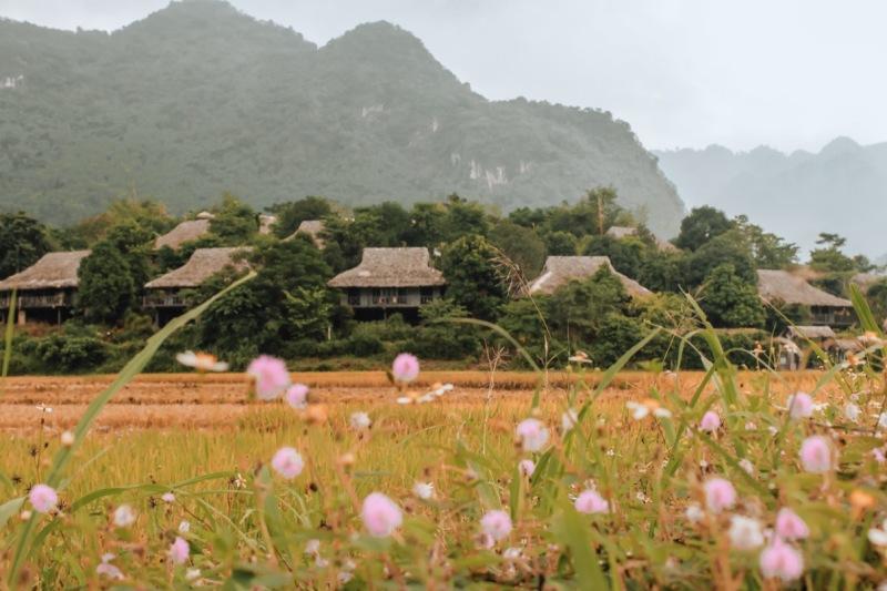 Mai Chau Ecolodge Ly Thanh Co 1
