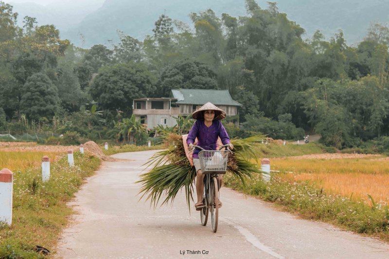Mai Chau Ly Thanh Co 4