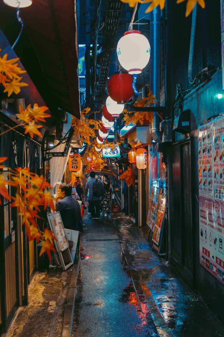 Piss Alley Tokyo Ly Thanh Co 2