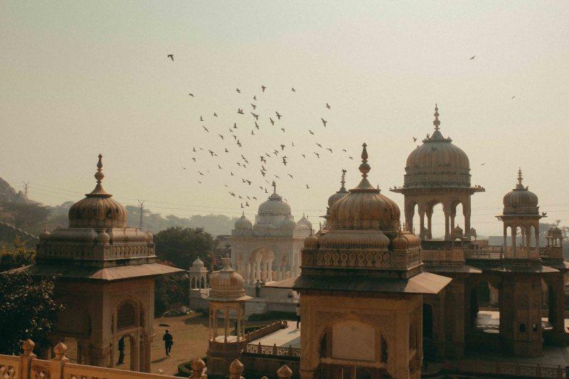 Jaipur Lythanhco 11